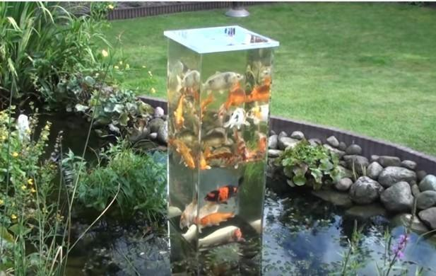 Upside Down Fish Pond