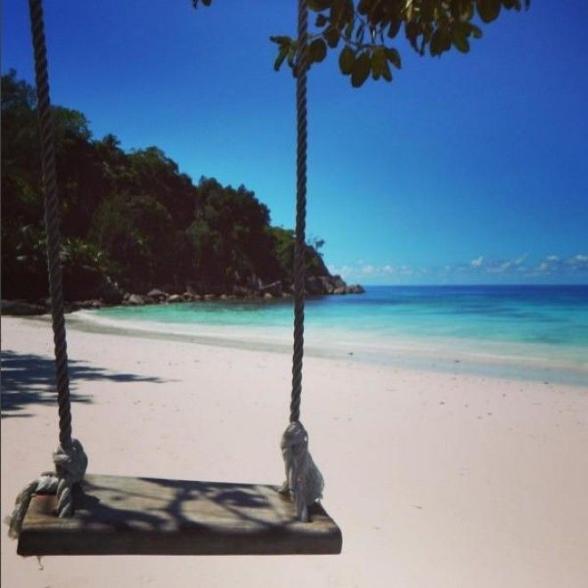 39 Tropical Instagram Photos To Cure Your Winter Blues