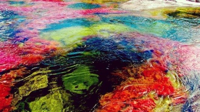 Image result for The River of the Five Colors