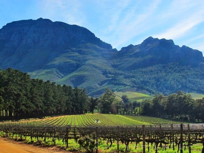 Take in some magic and food and wine in South Africa