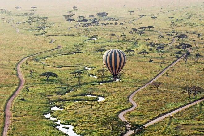 Take part a hot air balloon safari over a nature reserve in Tanzania