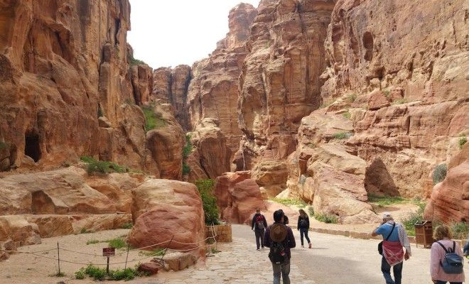 Tour the rosy mountains of Petra Jordan
