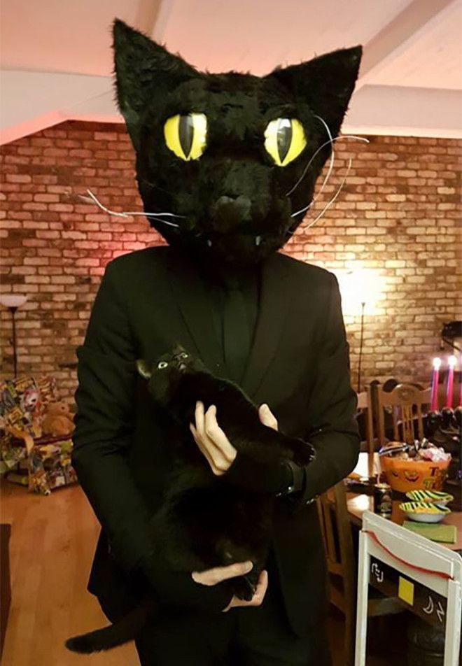 My Buddy Dressed Up As His Cat For Halloween Look At The Cats Face
