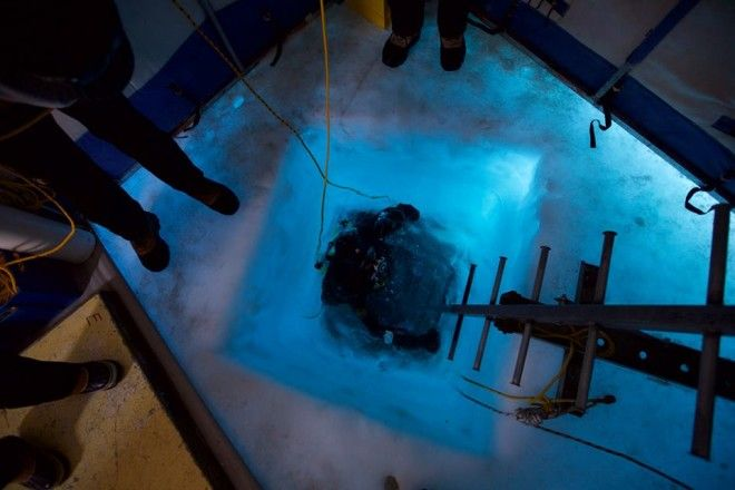 Beneath Antarcticas Sea Ice Scientists Discover a Rapidly Changing World