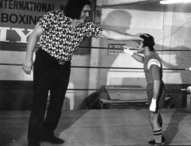 Andre The Giant Next To A Boxer