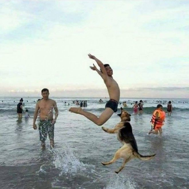 24 Funny Photos Taken Right Before Disaster Happened