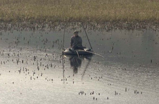 On A Little Lake On The Way To Wonsan, This Fisherman Uses A Tire As A Boat
