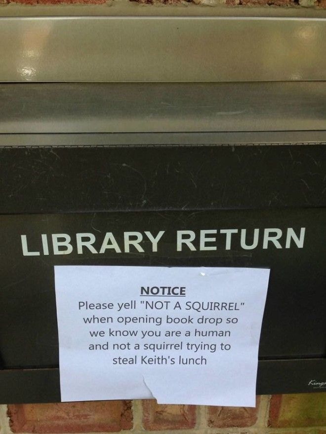 My Local Library Has This Sign On Their Dropoff Slot