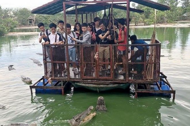 chinese-tourist-raft-feeding-meat-middle-of-hungry-crocodiles-3