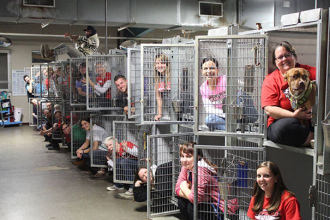 The Kansas City Missouri Animal Shelter Is Celebrating Empty Kennels Thanks To A Record-Setting Weekend