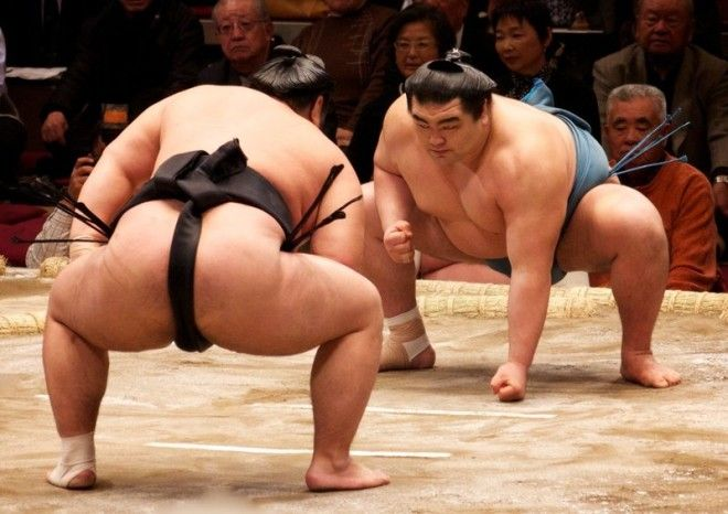 Top division sumo wrestlers square off. These champions will eat first, while the most junior members are left with the scraps at the bottom of the pot.