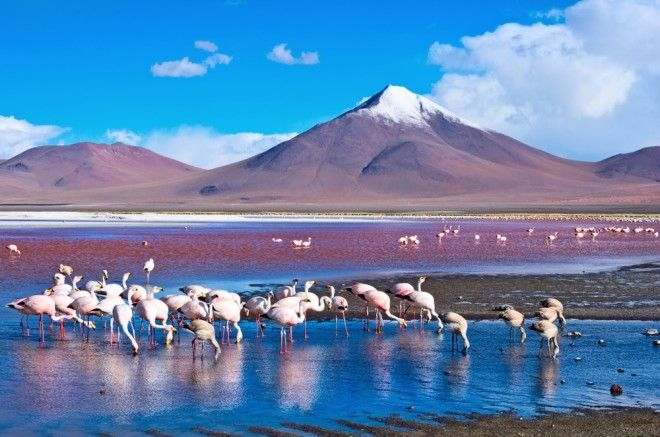 15 Stunning Natural Wonders in South America That Will Take Your Breath Away