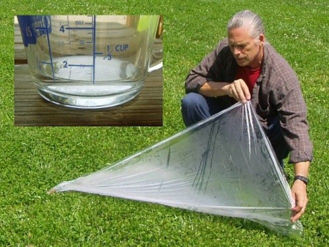 You can collect rainwater to drink using plastic sheet and a glass container.