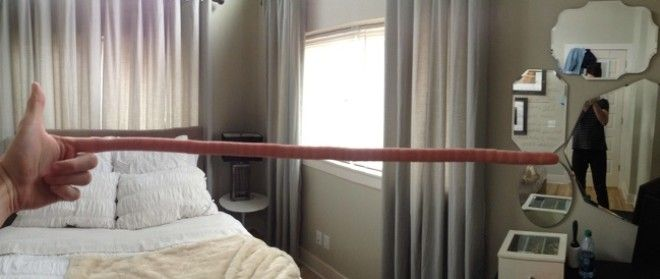 24 Times a Panoramic Photo Failed So Badly It Looked Like a Nightmare