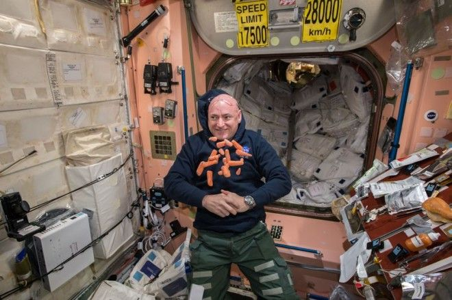 Astronauts Gene Expression No Longer the Same as His Identical Twin