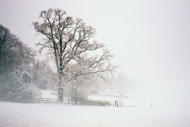 Landscape with Snow and Fog | © Nick Page/Flickr