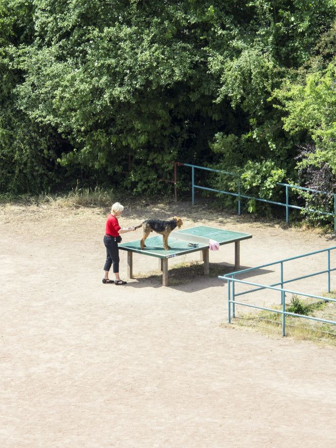 The Diverse Daily Life of a Ping Pong Table in Germany