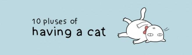 Illustrated guide to the advantages of having a cat