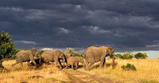 Exploring the sublime natural features of Kenya