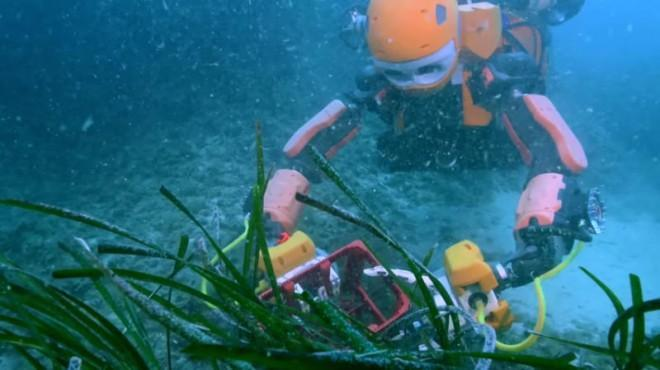 100m below the surface