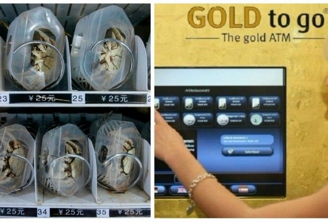 Underwear, books, live crabs, even gold!