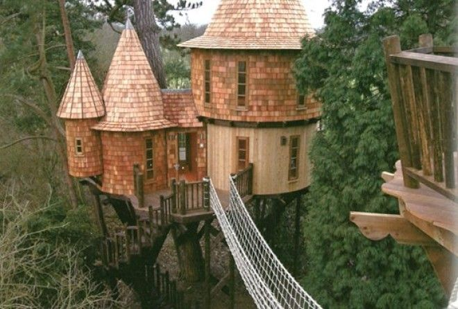 Have you ever wanted to build an amazing tree house?